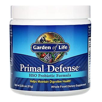 Garden of Life, Defensa primigenia, Polvo, Fórmula probiótica HSO, 2.85 oz (81 g)
