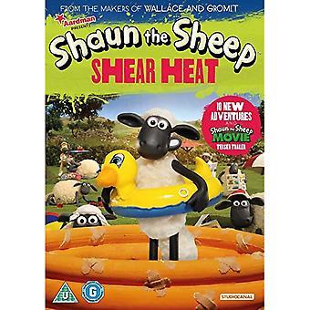 Shaun fåret: Shear Värme DVD