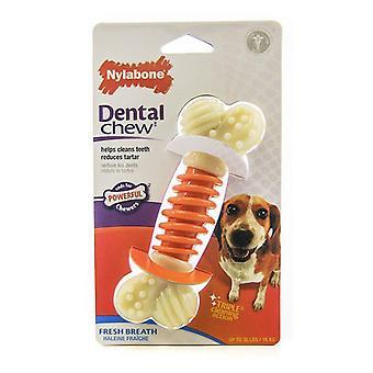"""Nylabone برو العمل تشيو الأسنان - التنفس الطازج - متوسط - 5 """"طويل"""