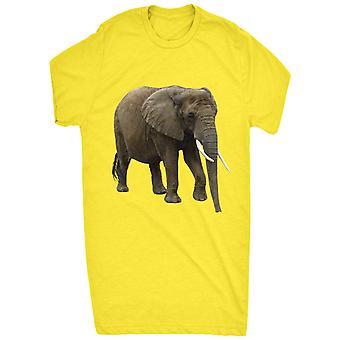 Renowned Wild Life Elephant