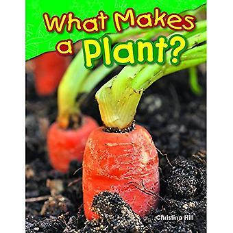 Ce qui rend une plante? (Grade 1) (Lecteurs de Science)