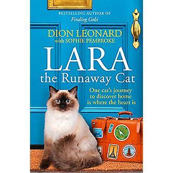 ララの暴走猫一匹の猫が hom を発見し、世界を旅した方法
