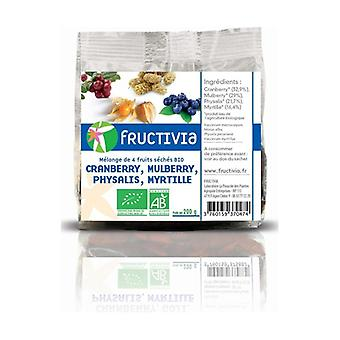 Mix 4 Fruits (Cranberries, Mulberries, Physalis, Blueberries) BIO 200 g
