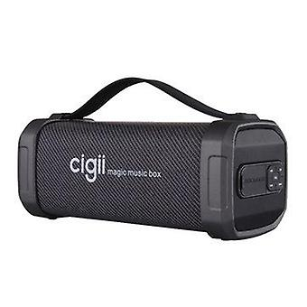 CIGII F62D 10W Portable bluetooth Speaker Noise Reduction Outdoor Headset