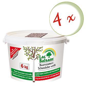 Sparset: 4 x FRUNOL DELICIA® Etisso® LacBalm Tree Trunk Protection Kleur Wit, 6 kg