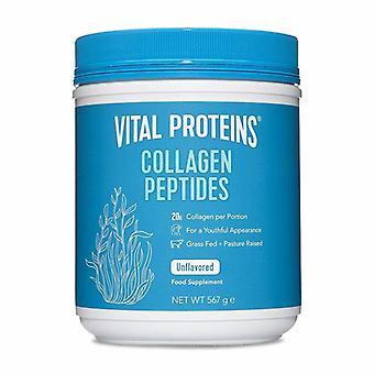Peptides de collagène de protéines vitales 567g