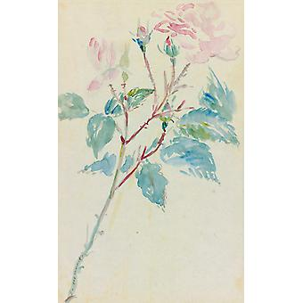 Eglantines, Edouard Manet, 19,4 x 12,1 cm