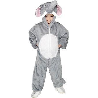 象の衣装、媒体。 中年齢 7-9