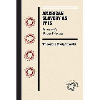 L'esclavage aux États-Unis comme il est