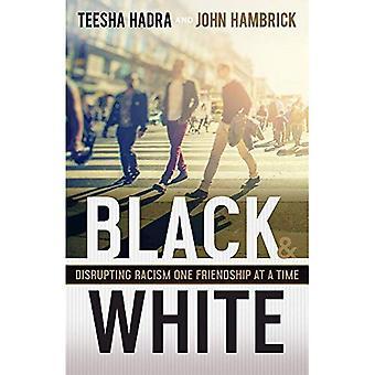 Noir et blanc: perturber le racisme une amitié à la fois