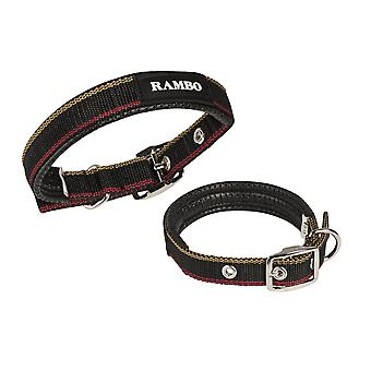 Rambo Dog Collar - Witney Gold