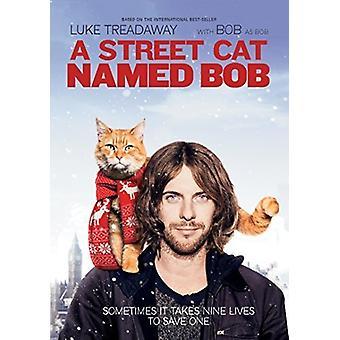 A Street Cat Named Bob [DVD] USA import