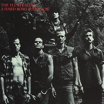 Flesh Eaters - Flesh Eaters: Complete Hard Road to Follow Sessions [CD] USA import