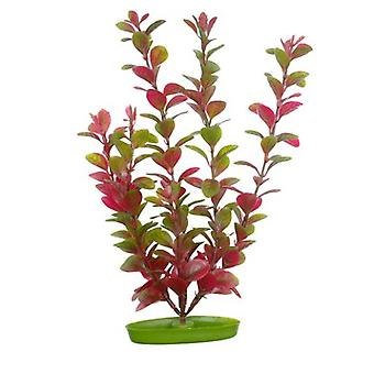 Marina Aquascaper Rood Ludwigia 50 cm (Vissen , Decoratie , Kunstplanten)