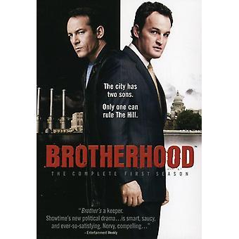Brotherhood - Brotherhood: Season 1 [DVD] USA import