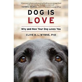 Dog Is Love door Clive D. L. Wynne & Wynne