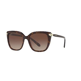 Bvlgari BV8207B 504/13 Gafas de sol Dark Havana/Brown Gradient