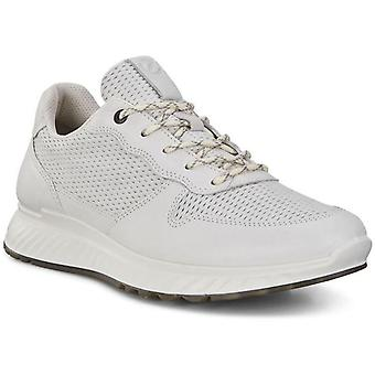 Ecco st.1 m trainers heren wit