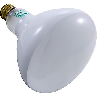 Halco R40FL300/12V 300W Flood Lamp Replacement Bulb