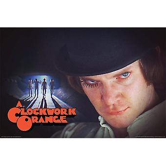Poster - A Clockwork Orange - Alex & The Roogs 24