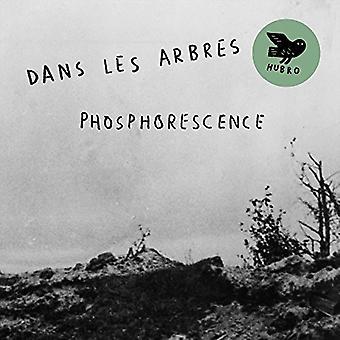 Dans Les Arbres - importer des USA Phosphoresence [CD]