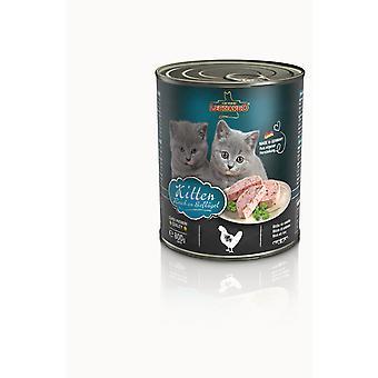 Leonardo Kitten (Cats , Cat Food , Wet Food)