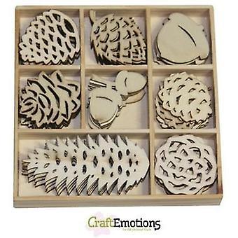 Craftemotions Forme di legno – Pineconi di Natale, 40 pezzi