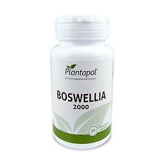 Boswellia 2000 30 tablets