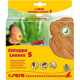 Sera Catappa Leaves Hojas de Almendro Indio (Fish , Maintenance , Water Maintenance)