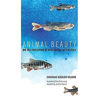 Animal Beauty: Sull'evoluzione dell'estetica biologica (The MIT Press)