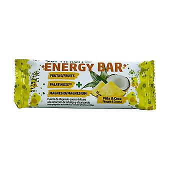 Optifruit Energy Bar + MG + Palatinose (Pineapple and Coconut Flavor) 1 unit of 40g