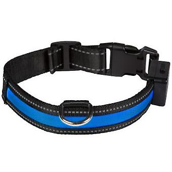 Num'axes Eyenimal Light Collar -Blue (Dogs , Collars, Leads and Harnesses , Collars)