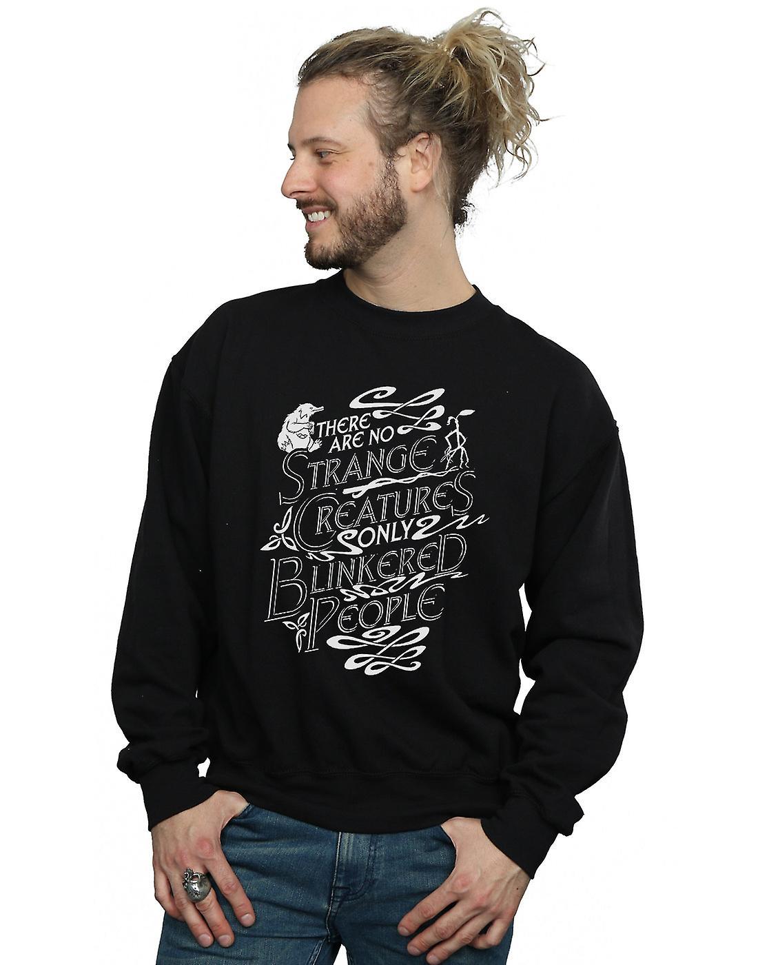 Fantastic Beasts Men's Strange Creatures Sweatshirt