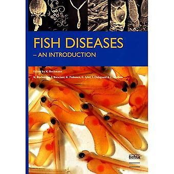 Choroby ryb: Wprowadzenie