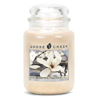 Goose Creek 24oz Large Scented 2 Wick Candle Jar Blooming Magnolia
