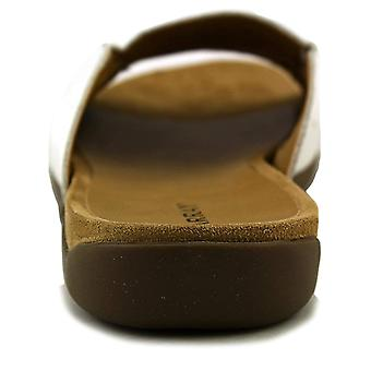TABLEAU Womens sand dollars en cuir Open Toe occasionnels Slide Sandals