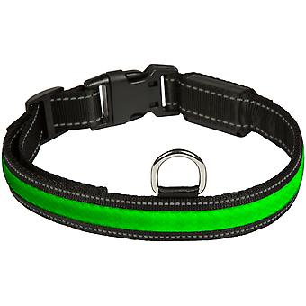 Eyenimal RGB Light Usb (Dogs , Collars, Leads and Harnesses , Collars)