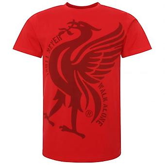 Liverpool Liverbird T-Shirt Hommes Red S