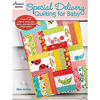 Special Delivery Quilting for Baby - Create 12 Original Keepsake Quilt