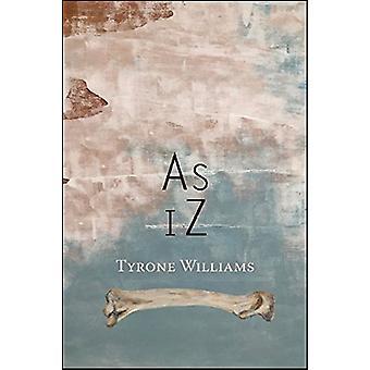 As iZ by Tyrone Williams - 9781632430618 Book
