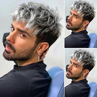 Mænd Casual Trendy Fuld Hair Paryk Silver Grey Kort lige lagdelte parykker Fashion