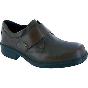 Cotswold męskie skórzane Cleeve wodoodporny dorywczo Oxford butów Brown