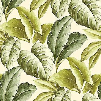 Winylowe tapeta tropikalny botaniczny pozostawia motywem strukturalnym drzewa wzór zielony
