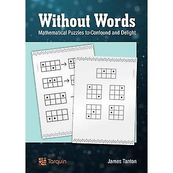 Without Words - Mathematical Puzzles to Confound and Delight by James