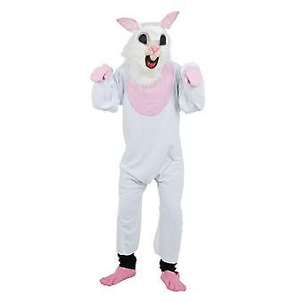 Bunny. Begroting