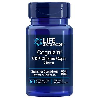 Life Extension CDP-Choline Caps, 250 mg, 60 Vcaps