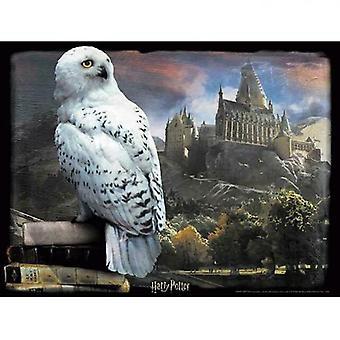 Harry Potter 3D Image Puzzle 300pc Hedwig