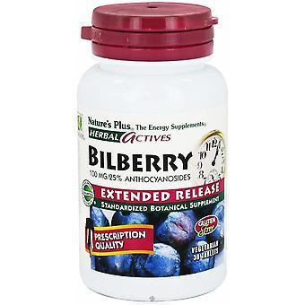 Naturaleza's Plus Heidelbeere 100 mg 30 Comprimidos