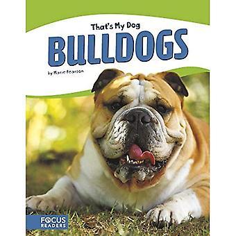 Dat is mijn hond: Bulldogs