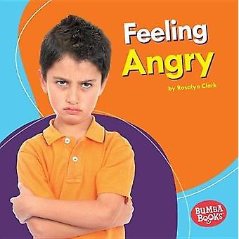 Feeling Angry by Rosalyn Clark - 9781512433708 Book